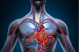 Angiologia y cirugia vascular
